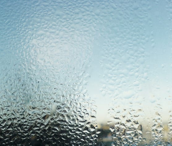 Simple condensation can be the cause of black mould