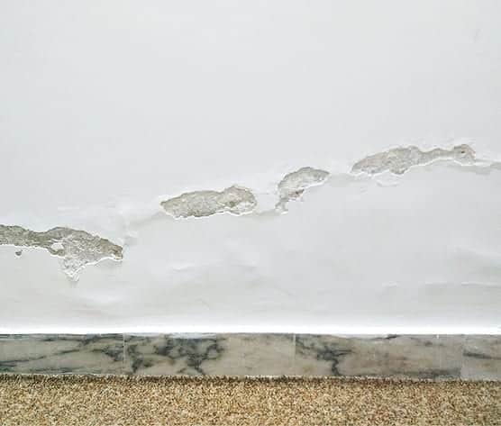 Example of Rising Damp